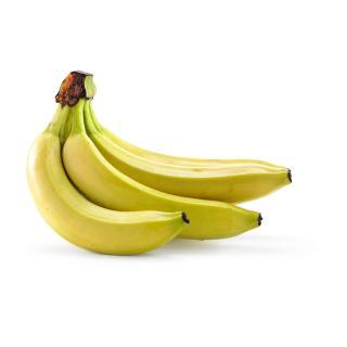 Bananen - plastikfreier Landbau