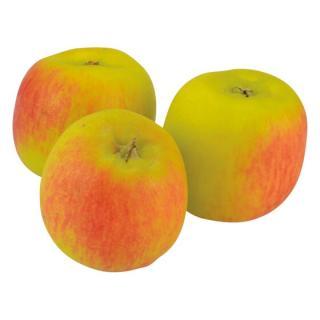 Apfel Delbar Estivale