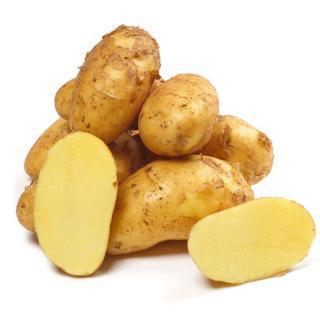 Kartoffel Allians fk