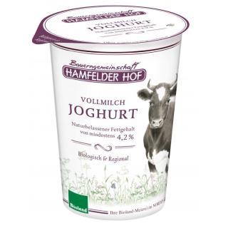 Joghurt natur mind. 4,2% Fett