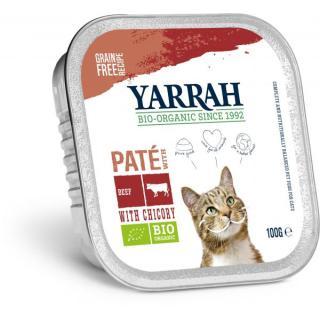 Katzen Paté Rind mit Zichorie
